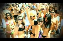 DJ Elon Matana - Summer HIT. crazy party...video