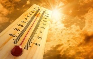 Реакции организма человека на жаркую погоду...