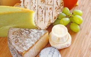 Հոլանդիայում խոզի կաթից պանիր են արտադրում